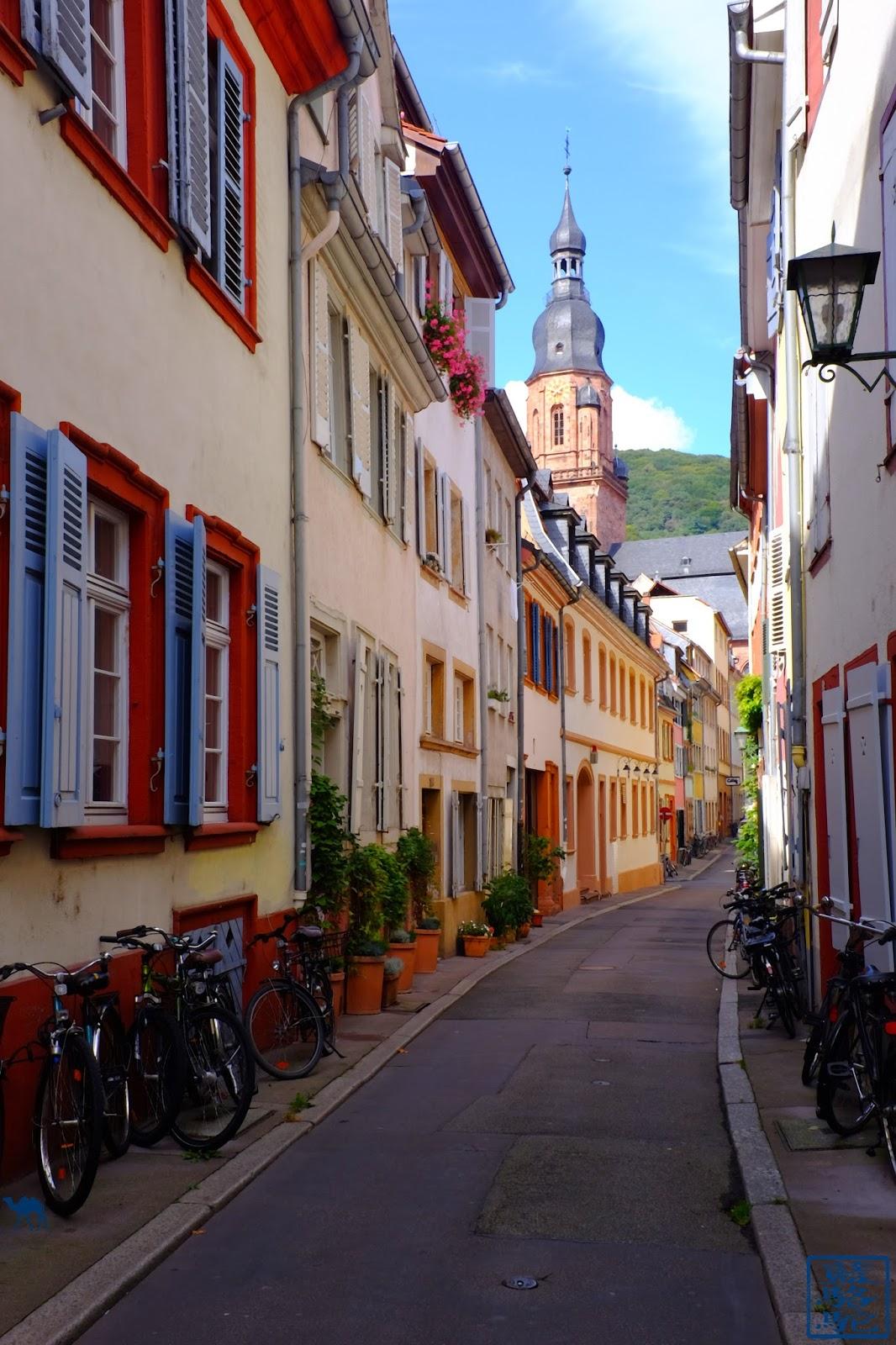 Le Chameau Bleu - Blog Voyage Heildeberg Allemagne - Rue - Heidelberg