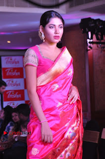 South Indian Celebrities Pos at Love For Handloom Collection Fashion Show  0140.jpg