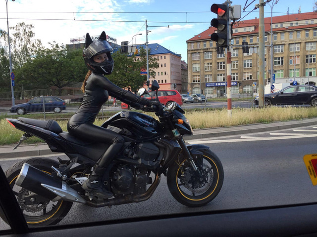 catwoman on a motorcycle