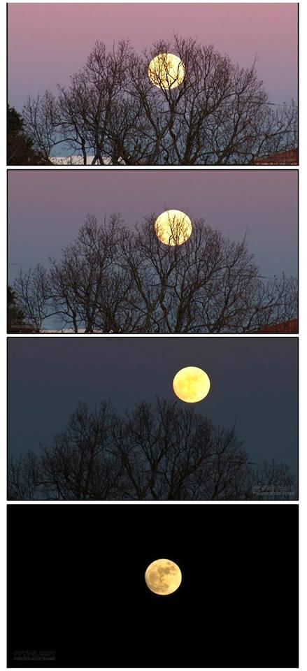 Luna apareciendo en 4 fotografías
