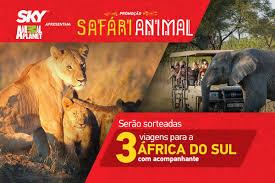 Promoção Safári Animal Sky