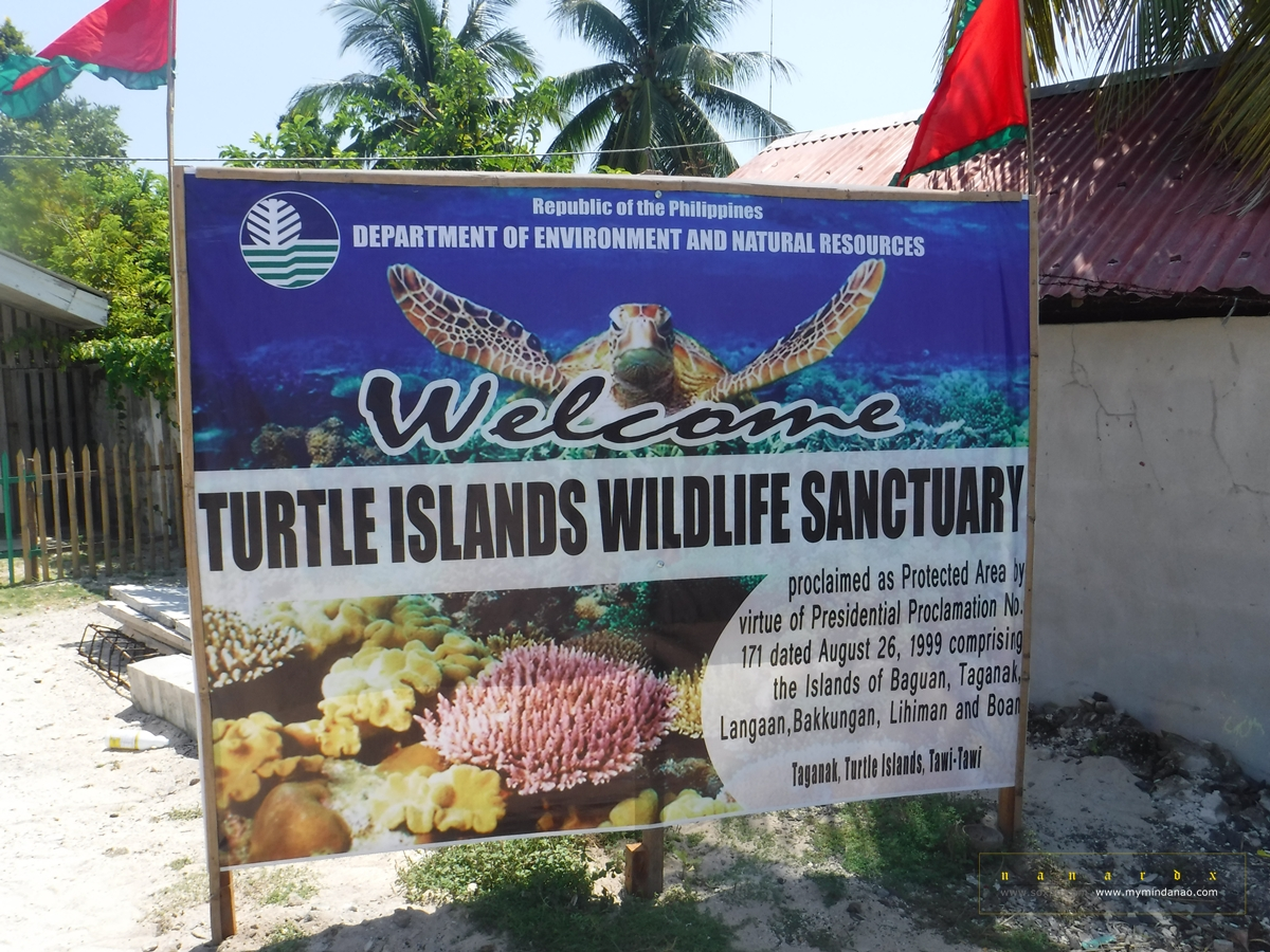Turtle Islands in Tawi-Tawi: A Paradise for Marine Turtles