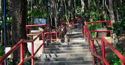 25 Tempat Wisata Di Magelang Jawa Tengah Selain Borobudur