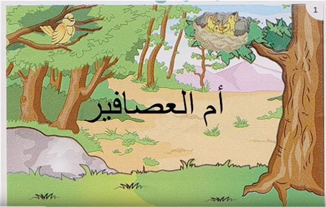 حكاية : أم العصافير
