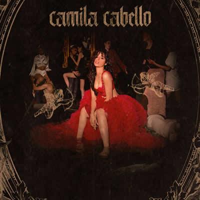Camila Cabello - Should've Said It