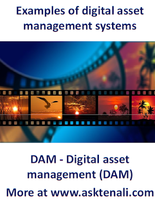 Best digital asset management systems