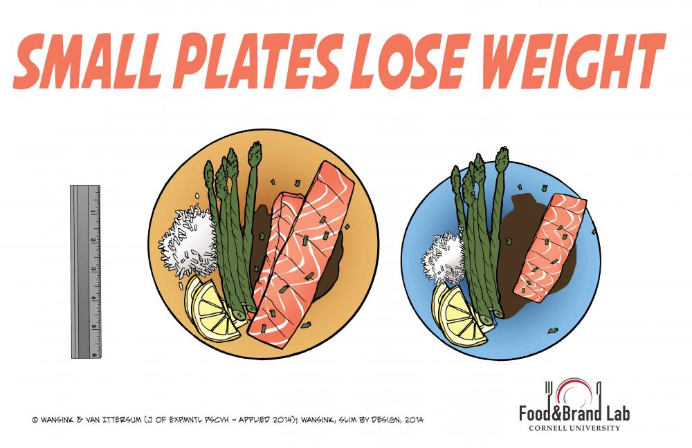 Why Small Plates Help You Lose Weight