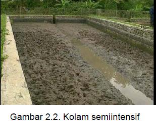 Hendra Aquacultur Jenis Kolam Ikan Budidaya