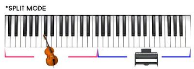 đàn Piano điện P115