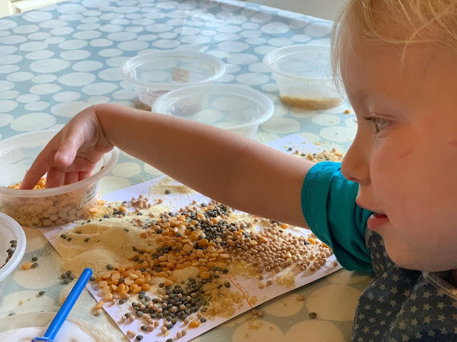 Toddler taking handfuls of split peas to stick on the card