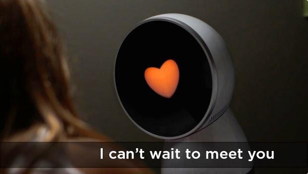 Meet The World's First Family Robot