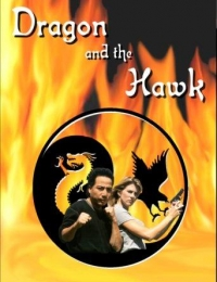 Dragon and the Hawk | Bmovies