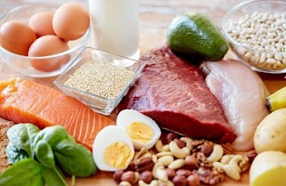 Protein is The Most Important Macronutrient to Lose Weight