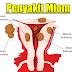 Miom Definisi Penyebab Dan Pengobatan Serta Tanda Gejala Penyakit Miom Menurut Ilmu Kedokteran