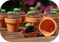 http://www.ablackbirdsepiphany.co.uk/2014/05/spring-seedling-cupcakes-tutorial.html