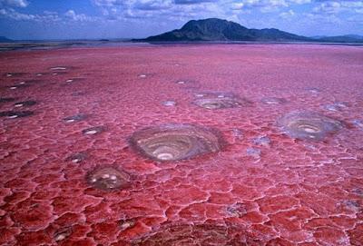 pink gölü, avustralya