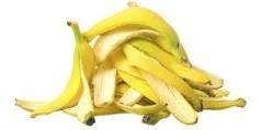 <alt img src='gambar.jpg' width='100' height='100' alt=' fertilizer banana skin'/>