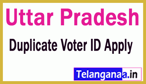 How to Apply for Duplicate Voter ID in Uttar Pradesh
