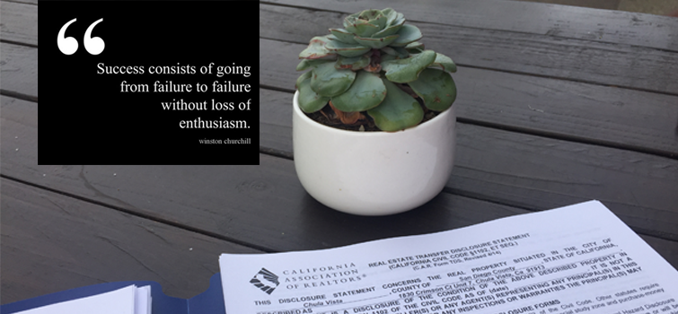 Successful Quotes Blogging Realtor