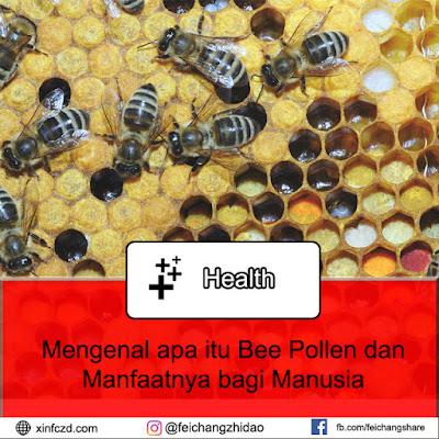 Mengenal Manfaat dan Pengertian Bee Pollen