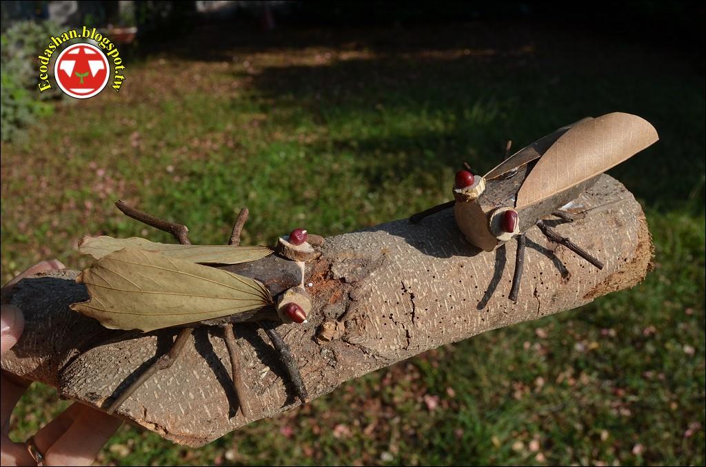 大山腳: 以「鳴蟲課程」培養「核心素養」