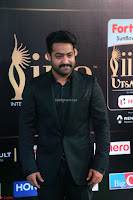 Jr. NTR at IIFA Utsavam Awards 2017 (2).JPG