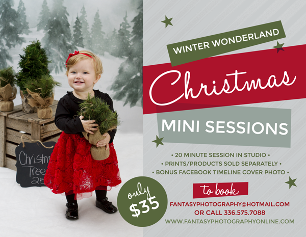 christmas mini sessions in winston salem | holiday photography