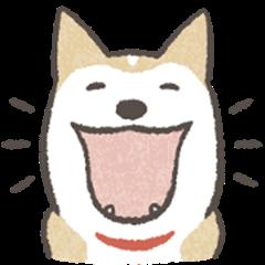 Shiba Inu (Shiba-Dog) Animated Stickers