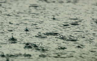 Aspectos da água salobra