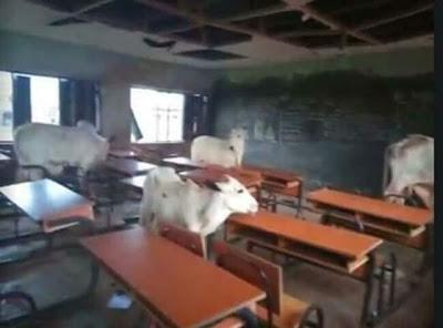 Suspected Fulani Herdsmen Murders 6 Teachers In Benue