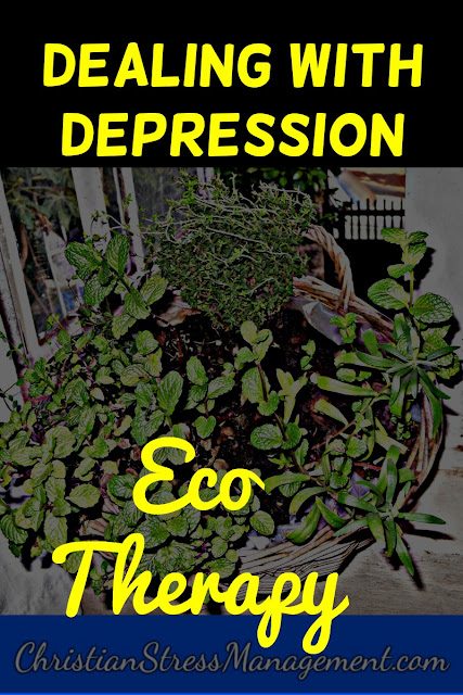 Eco-Therapy for Dealing with Depression