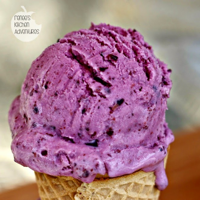Blueberry Frozen Yogurt:  #IceCreamWeek #frozen