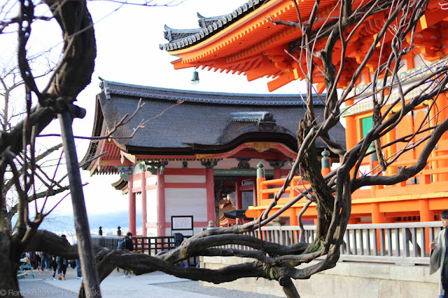 A Day Tour in the Breathtaking Kyoto of Japan