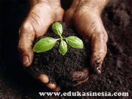 Tanah : Pengertian Tanah, Jenis-Jenis Tanah, Profil Tanah, Tekstur Tanah, Permeabilitas Tanah, Kesuburan Tanah, Beserta Penjelasan Terlengkap Mengenai Tanah