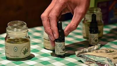 http://buenasiembra.com.ar/salud/terapias-alternativas/los-beneficios-del-aceite-de-canamo-historia-propiedades-1535.html