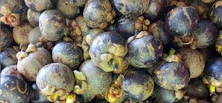 Nutrien Dan kebaikan daripada buah Manggis