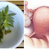 Remove Cyst and Fibroids With The Help Of This Two Ingredients