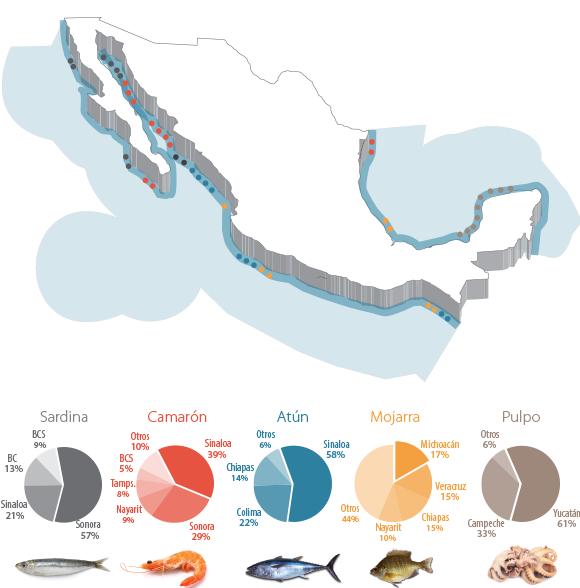 Nyfiken Geográfico: PESCA EN MÉXICO