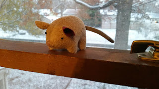 Aristotle II toy mouse in window