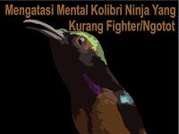 Mengatasi Mental Kolibri Ninja Yang Kurang Fighter/Ngotot