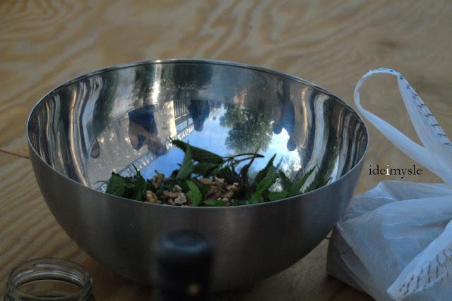 warsztaty kulinarne, warsztaty roślinne, dzikie rośliny jadalne, przepis na pesto, pesto recipe, edible wilds