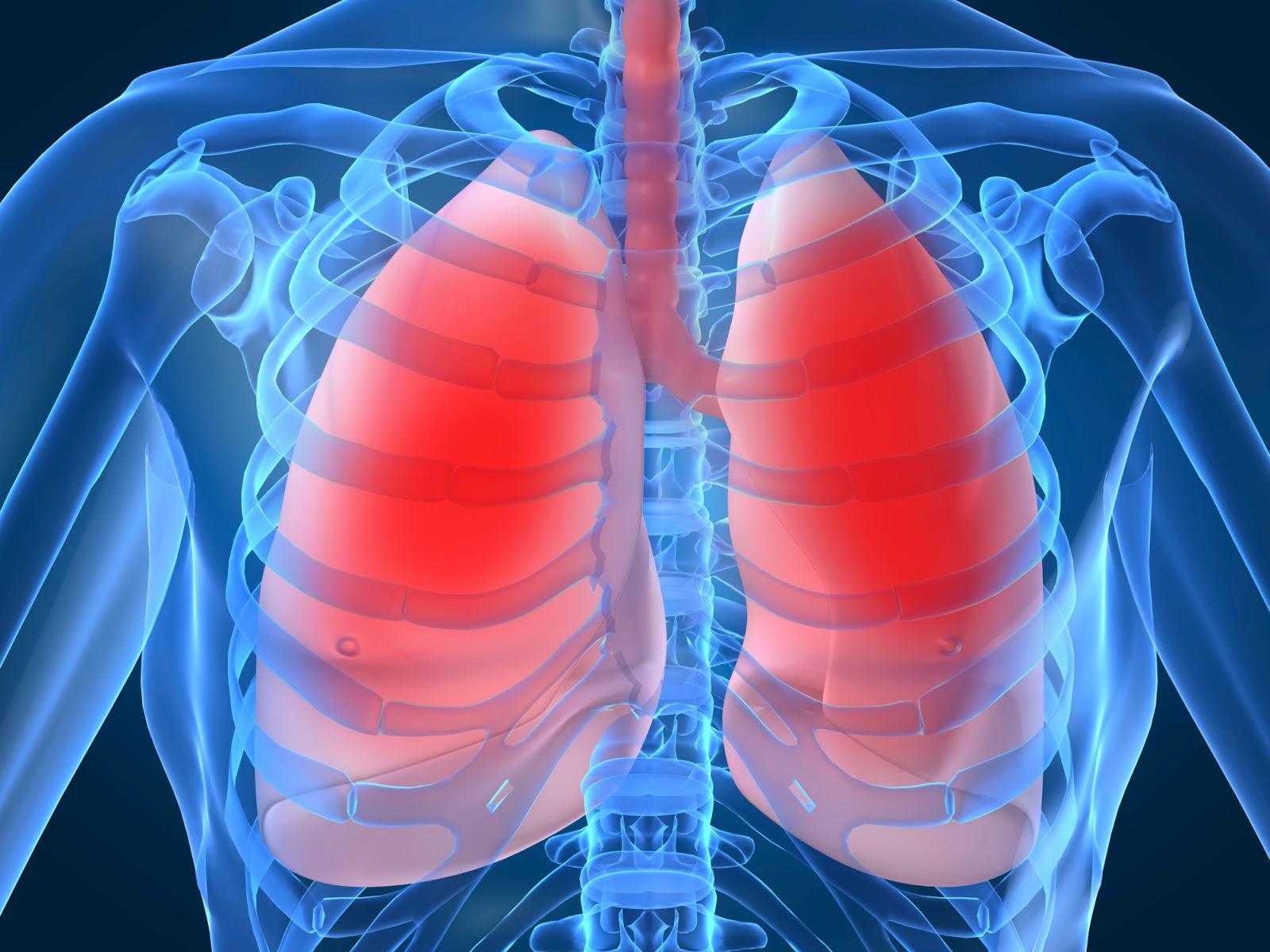 Πως να κρατήσετε υγιείς τους πνεύμονες σας