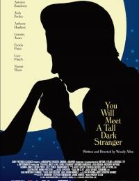 You Will Meet a Tall Dark Stranger | Bmovies