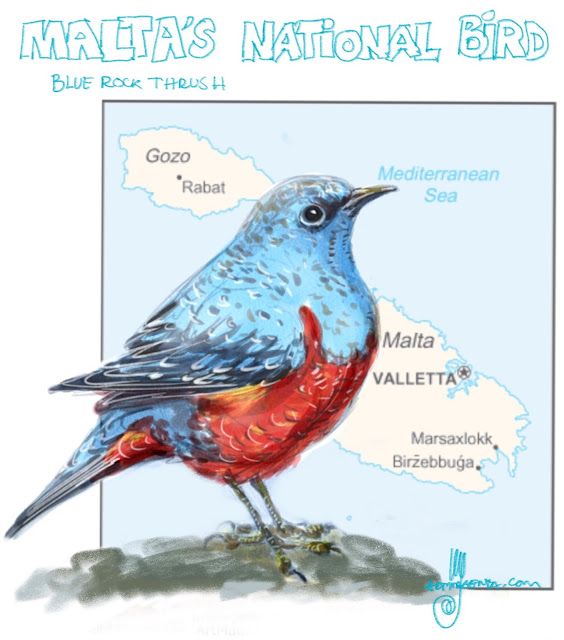 Malta's national bird Painting by Ulf Artmagenta