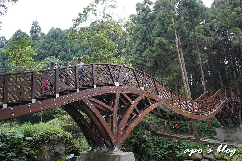 溪頭景點-銀杏橋
