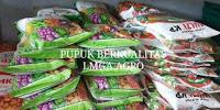 budidaya semangka inul, buah semangka redin 09, jual benih murah, lmga agro