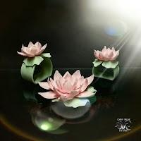 Porcelain lotuses