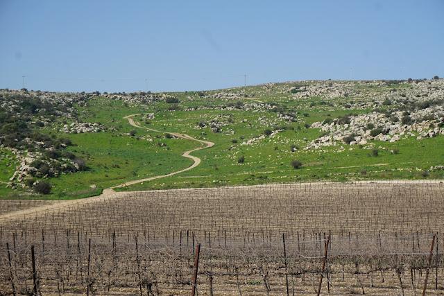 הגבעות הדרומיות ליד מבוא חורון