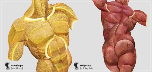 00-Dan-Cretu-Human-Anatomy-with-Food-Art-Sculptures-www-designstack-co