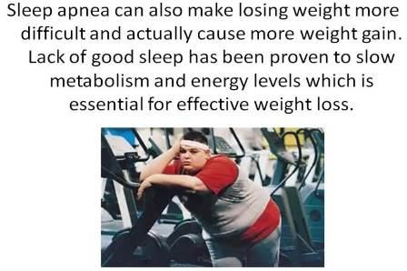 fat burning hormones in your body